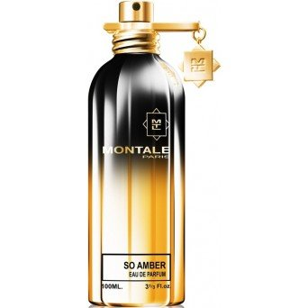 Montale So Amber Travel Edition