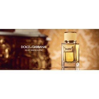 Dolce&Gabbana Velvet Mimosa Bloom