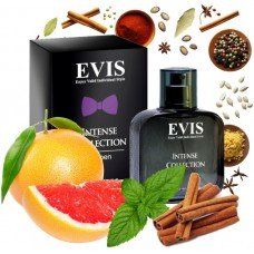 Evis Intense Collection №104